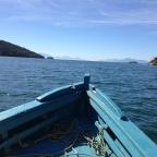 A ilha de Elena Ferrante